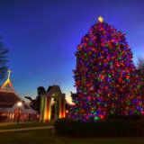 Fairfield U. Tree Lighting To Be Part Of CBS Christmas Eve Special