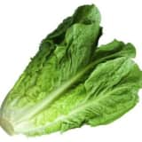 Consumer Reports: Avoid Romaine Lettuce After E. Coli Cases In Connecticut