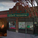 Bergen Vet Accused Of Burning Second Dog In Surgery