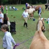 48th Annual Horse Show & Country Fair In Peekskill