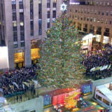 Rockefeller Center Christmas Tree Will Come From This Area Hamlet