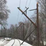 Wires, Branches On Track Suspend Service To NJ Transit Morris & Essex Line