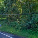 Deer, Bicyclist Collide In Central Jersey