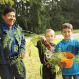 Pocantico Hills School Celebrates Fall With Harvest Festival