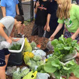 Suffern MS Green Team Gives Back To Community