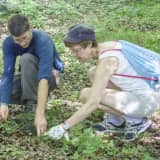 Westchester Land Trust Seeking Volunteers In Bedford