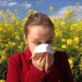Plagued By Pollen? The Valley Hospital Offers Easy Tips For Seasonal Relief