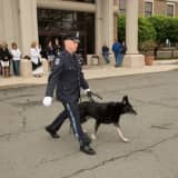 Senior K9 Officer Retires From Clarkstown PD After Long Tenure
