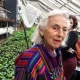 Hope Levene, 98, Of Bedford Was World Traveler, Volunteer Extraordinaire