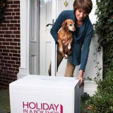 Need Help With Your Decorations, New Canaan? Call Holiday In A Box