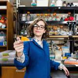 Scientist Breaks Down Synthetic Biology In Talk At Greenwich's Bruce Museum