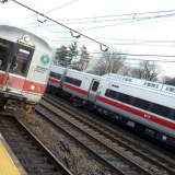 Metro-North Restores Train Service On New Canaan Branch After Fallen Tree