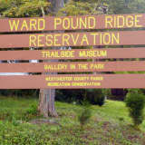 Raven Rocks Run Coming To Ward Pound Ridge Reservation