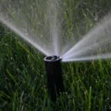 Need Rain: 'Severe' Drought Conditions Worsening Across Fairfield County