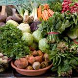 West Milford Group Needs Volunteers To Harvest Crops For Food Pantries