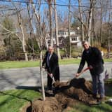 Bedford Residents 'Leave' The Town Greener On Arbor Day
