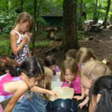 Check Out Camp Aspetuck In Weston As Girl Scouts Hold Open House