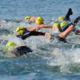 Swim Across America Gears Up For Cancer Fundraising Event In Pelham