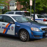 Missing Car, Bear Track Sighting Top Mount Kisco Police Reports