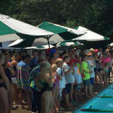 Swimmers Hit The Pool In Darien For League Championships