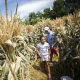 Philipsburg Manor Features Corn Festival