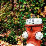 Suez Flushes Hydrants In Westchester