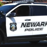 Newark Officer Fires Gun At Dog Who Bit Him, Police Say
