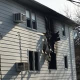 Dog, Two Birds Killed In Overnight Saddle Brook Fire