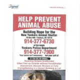 Animal Defenders Launch Anti-Abuse Campaign At Westchester Bus Stops