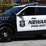 Dog Was Burned, Beaten To Death In Newark, Police Say