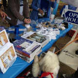 Coldwell Banker Finds Homes For Pets In Somers