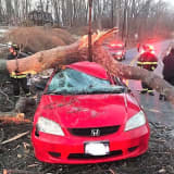 Photos: Tree Comes Down On Occupied Car In Mahopac