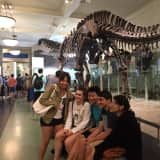 Pelham Freshmen See Dinosaurs At Museum Of National History