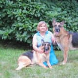 Herd Of German Shepherds Removed From Franklin Lakes Couple's Home