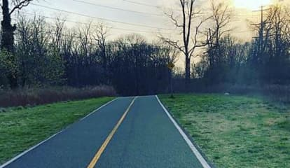 New Details Released After Man Found Dead On Suffolk County Trail