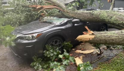 Large Tree Falls On Home In Connecticut, Crushes Vehicle