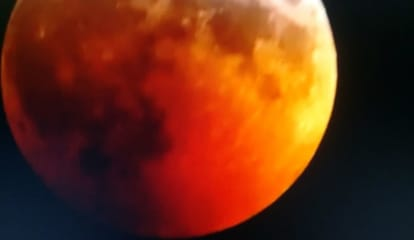 Did You See Super Blood Wolf Moon? 2021 Is Your Next Chance