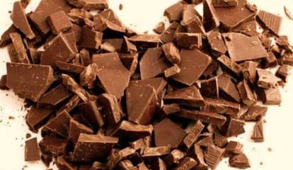 HOLY FUDGE: Massive Chocolate Expo Coming To Garden State Plaza This Weekend
