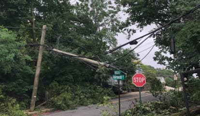 Toppled Tree Brings Down Power Lines, Shutting Down Several Tuckahoe Roads