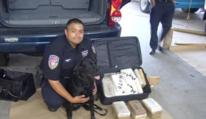 RIP, Sal: Westchester Police Mourn Loss Of K9 Narcotics Officer