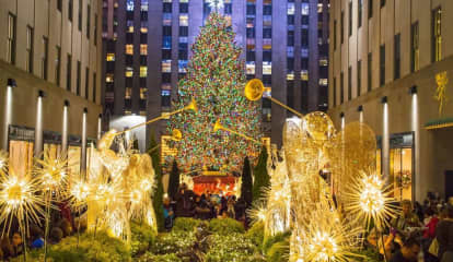 Christmas Tree From Hudson Valley To Be Lit Tonight At Rockefeller Center