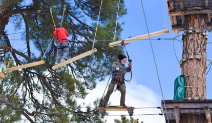 Treetop Zip-Line Course Could Be Coming Soon To Morris County