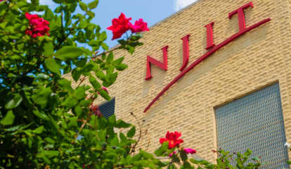 VIDEO: NJIT Police Officers Suspended After Youth's Arrest Goes Viral