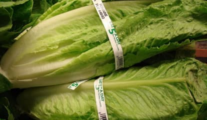HEALTH WARNING: Romaine Lettuce Unsafe In Any Form, CDC Warns After E Coli Outbreak