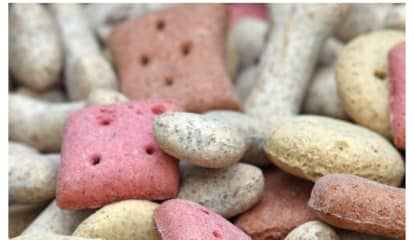 Police Warn Of Tainted Biscuits Sickening Dogs