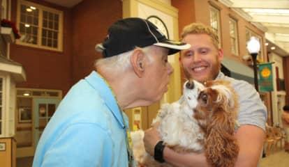 Waveny Celebrates Dog Days Of Summer With Furry Friends