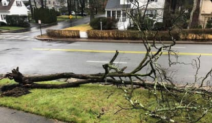 Widespread Flooding, Downed Poles Close NJ, PA Roads