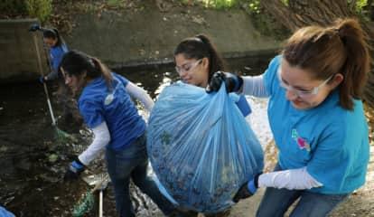 Passaic Volunteers Get Dirty To Clean Up Ridgefield Creek