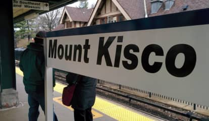 =Woman With Warrant Arrested At Mount Kisco Metro-North Station