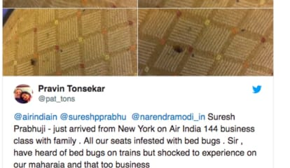 Bed Bug Infestation Reported On Air India Flights From Newark